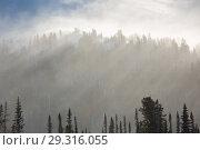Купить «Trees covered with hoarfrost and snow in mountains. The sun's rays illuminate the trees.», фото № 29316055, снято 9 декабря 2018 г. (c) Владимир Пойлов / Фотобанк Лори