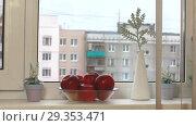 Купить «Женщина берет яблоко из вазы на подоконнике», видеоролик № 29353471, снято 1 ноября 2018 г. (c) Элина Гаревская / Фотобанк Лори