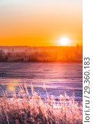 Купить «Восход солнца над покрытыми инеем полями. Западная Сибирь, Новосибирская область, Колыванский район, Россия (фокус на заднем плане)», фото № 29360183, снято 27 октября 2018 г. (c) Евгений Мухортов / Фотобанк Лори