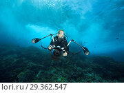 Купить «Scuba diver in surf zone, Christmas Island, Australia», фото № 29362547, снято 17 декабря 2018 г. (c) age Fotostock / Фотобанк Лори