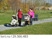 Купить «Молодые мамы с колясками прогуливаются в парке имени 850-летия Москвы. Район Марьино. Город Москва», эксклюзивное фото № 29366483, снято 16 октября 2018 г. (c) lana1501 / Фотобанк Лори