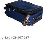 The ball python (Python regius), royal python. Snake escapes from a suitcase. Стоковое фото, фотограф Ирина Кожемякина / Фотобанк Лори