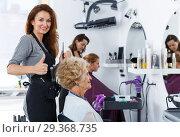 Купить «Hairdresser doing styling of senior woman», фото № 29368735, снято 26 июня 2018 г. (c) Яков Филимонов / Фотобанк Лори
