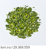 Different green vegetables broccoli, spinach, brussels sprouts, asparagus, mint leaves, cucumber and pepper slices on a gray background with space for text. Healthy food concept. Flat lay. Стоковое фото, фотограф Ярослав Данильченко / Фотобанк Лори