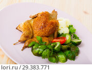 Купить «Grilled partridge with steamed vegetables», фото № 29383771, снято 22 марта 2019 г. (c) Яков Филимонов / Фотобанк Лори