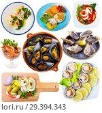 Купить «Seafood meals isolated on white», фото № 29394343, снято 16 декабря 2018 г. (c) Яков Филимонов / Фотобанк Лори