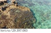 Купить «Mediterranean coast of Cyprus, fragment», видеоролик № 29397083, снято 17 января 2019 г. (c) Володина Ольга / Фотобанк Лори