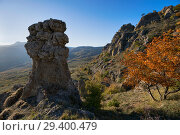 Купить «Beautiful view in the Valley of stone ghosts in the mountains Demerdzhi and yellow tree in the autumn Crimea», фото № 29400479, снято 12 октября 2018 г. (c) Яна Королёва / Фотобанк Лори