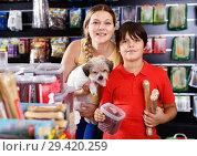 Купить «Cheerful woman with preteen son buying dog treats and chews in store to reward their precious pup», фото № 29420259, снято 22 августа 2018 г. (c) Яков Филимонов / Фотобанк Лори