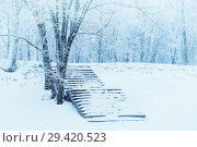 Купить «Winter landscape in cold tones - winter frosty trees and old stone stairs in the winter park under snowfall in cloudy day», фото № 29420523, снято 11 декабря 2017 г. (c) Зезелина Марина / Фотобанк Лори