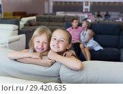 Купить «Sisters which are happy of the purchase of a new sofa», фото № 29420635, снято 3 июля 2017 г. (c) Яков Филимонов / Фотобанк Лори