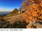 Купить «Beautiful Demerdzhi mountains and yellow maple tree leaves on a sunny autumn day», фото № 29430743, снято 13 октября 2018 г. (c) Яна Королёва / Фотобанк Лори