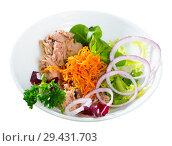 Купить «Salad of carrots with canned tuna, onion», фото № 29431703, снято 13 декабря 2018 г. (c) Яков Филимонов / Фотобанк Лори