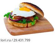 Купить «Cheeseburger with beef patty, fried egg, bacon, vegetables», фото № 29431799, снято 25 марта 2019 г. (c) Яков Филимонов / Фотобанк Лори