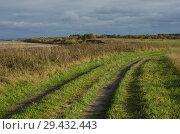 Купить «Дорога через поле с невысокой зеленой травой», фото № 29432443, снято 29 сентября 2018 г. (c) Яковлев Сергей / Фотобанк Лори