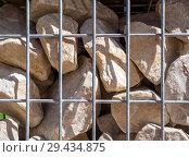 Купить «Булыжники, закрепленные металлической решеткой», фото № 29434875, снято 23 июня 2018 г. (c) Вячеслав Палес / Фотобанк Лори