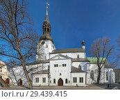 Купить «Домский собор в Таллине, Эстония», фото № 29439415, снято 19 марта 2015 г. (c) Михаил Марковский / Фотобанк Лори