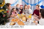 Купить «Family members saying toasts during dinner», фото № 29439751, снято 23 января 2019 г. (c) Яков Филимонов / Фотобанк Лори