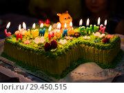 Купить «Праздничный торт с горящими свечами», эксклюзивное фото № 29450515, снято 6 октября 2018 г. (c) Игорь Низов / Фотобанк Лори