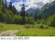 Купить «Summer in mountains», фото № 29455991, снято 17 июля 2018 г. (c) александр жарников / Фотобанк Лори