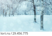 Купить «Winter landscape - wonderland winter forest with deciduous winter trees covered with frost. Snowy winter park scene with falling snowflakes», фото № 29456775, снято 11 декабря 2017 г. (c) Зезелина Марина / Фотобанк Лори
