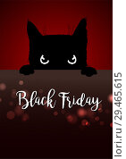 Купить «Black friday poster with angry black cat», иллюстрация № 29465615 (c) Миронова Анастасия / Фотобанк Лори