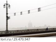Купить «Туман на Неве. Санкт-Петербург», эксклюзивное фото № 29470947, снято 10 ноября 2010 г. (c) Александр Алексеев / Фотобанк Лори