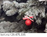 Купить «Блестящий новогодний шар с ленточкой на заснеженной елке.Новогодний фон.», фото № 29475335, снято 10 декабря 2014 г. (c) Милана Харитонова / Фотобанк Лори