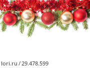Christmas decorations, red and golden glass balls lie on branches of Christmas tree, on white background. Стоковое фото, фотограф Юлия Бабкина / Фотобанк Лори