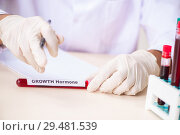 Купить «Young handsome lab assistant testing blood samples in hospital», фото № 29481539, снято 31 августа 2018 г. (c) Elnur / Фотобанк Лори
