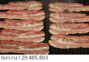 Close up cooking bacon slices on electric grill. Стоковое фото, фотограф Anton Eine / Фотобанк Лори