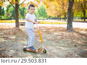 Купить «Little boy in the park», фото № 29503831, снято 25 сентября 2015 г. (c) Сергей Сухоруков / Фотобанк Лори