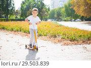 Купить «Little handsome boy in the park», фото № 29503839, снято 25 сентября 2015 г. (c) Сергей Сухоруков / Фотобанк Лори