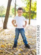 Купить «cheerful boy among the trees», фото № 29503843, снято 25 сентября 2015 г. (c) Сергей Сухоруков / Фотобанк Лори
