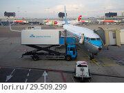 Купить «Самолет Боинг 737 авиакомпании KLM Royal Dutch Аирлинес  на обслуживании перед вылетом в аэропорту Схипхол ранним утром. Амстердам», фото № 29509299, снято 17 сентября 2017 г. (c) Виктор Карасев / Фотобанк Лори