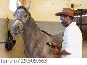 Купить «Man shearing gray horse with trimmer», фото № 29509663, снято 2 октября 2018 г. (c) Яков Филимонов / Фотобанк Лори