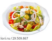 Купить «Warm salad with chicken and eggplant», фото № 29509867, снято 16 февраля 2019 г. (c) Яков Филимонов / Фотобанк Лори