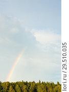 Купить «Яркая радуга в небе над лесом после дождя», фото № 29510035, снято 5 августа 2018 г. (c) Екатерина Овсянникова / Фотобанк Лори