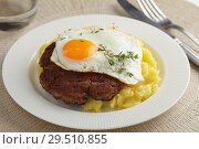 Купить «Hamburg steak with fried egg», фото № 29510855, снято 31 октября 2018 г. (c) Stockphoto / Фотобанк Лори