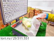 Купить «Woman weighs apples at the grocery store.», фото № 29511551, снято 25 октября 2018 г. (c) Акиньшин Владимир / Фотобанк Лори