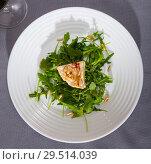 Купить «Camembert cheese with pine nuts and arugula», фото № 29514039, снято 14 июля 2020 г. (c) Яков Филимонов / Фотобанк Лори