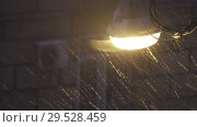 Купить «Street lamp at night during a snowstorm», видеоролик № 29528459, снято 3 декабря 2008 г. (c) Куликов Константин / Фотобанк Лори