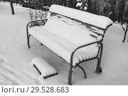 Купить «Садовая скамейка засыпана снегом», эксклюзивное фото № 29528683, снято 28 ноября 2018 г. (c) Анатолий Матвейчук / Фотобанк Лори