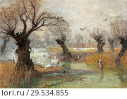 Купить «Charlemont Hugo - Pelicans on the Riverbank.», фото № 29534855, снято 11 декабря 2018 г. (c) age Fotostock / Фотобанк Лори