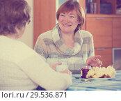 Купить «Happy mature women drinking tea and chatting», фото № 29536871, снято 27 мая 2020 г. (c) Яков Филимонов / Фотобанк Лори