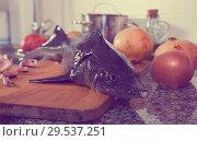 Купить «Fresh sturgeon with pomegranates and spices on stone table», фото № 29537251, снято 5 февраля 2018 г. (c) Яков Филимонов / Фотобанк Лори