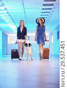 Купить «Two young women and dog border collie with suitcases», фото № 29537451, снято 20 июля 2018 г. (c) Serg Zastavkin / Фотобанк Лори
