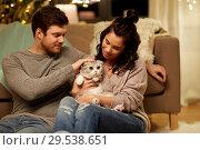 Купить «happy couple with cat at home», фото № 29538651, снято 13 января 2018 г. (c) Syda Productions / Фотобанк Лори