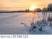 Купить «Закат на заснеженном озере, следы в сторону леса, Карелия», фото № 29540123, снято 24 декабря 2014 г. (c) Кекяляйнен Андрей / Фотобанк Лори