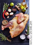 Купить «raw free-range whole turkey, top view», фото № 29540291, снято 5 декабря 2018 г. (c) Oksana Zh / Фотобанк Лори
